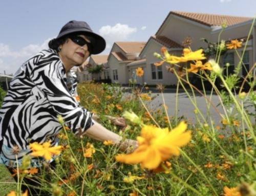 Naturally Occurring Retirement Communities